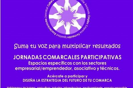 Jornadas Comarcales Participativas 29 de Febrero Fuente de Cantos