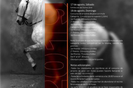 feria-2019caballo-e1565868536431-scaled.jpg